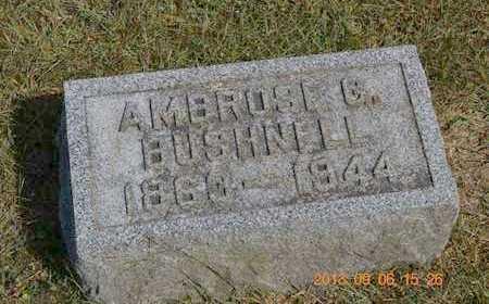 BUSHNELL, AMBROSE G. - Branch County, Michigan | AMBROSE G. BUSHNELL - Michigan Gravestone Photos