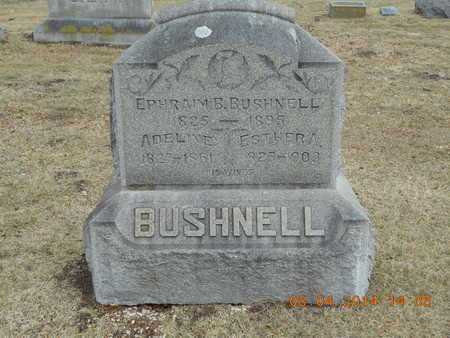 BUSHNELL, ESTHER A. - Branch County, Michigan | ESTHER A. BUSHNELL - Michigan Gravestone Photos