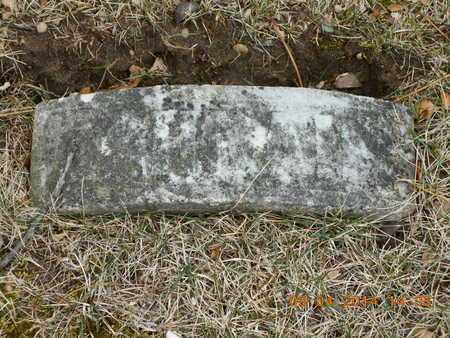 BUSHNELL, EPHRAIM B. - Branch County, Michigan | EPHRAIM B. BUSHNELL - Michigan Gravestone Photos