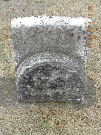 BUSHNELL, LUCY - Branch County, Michigan | LUCY BUSHNELL - Michigan Gravestone Photos