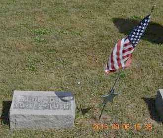 BUTLER, ALONZO E. - Branch County, Michigan   ALONZO E. BUTLER - Michigan Gravestone Photos