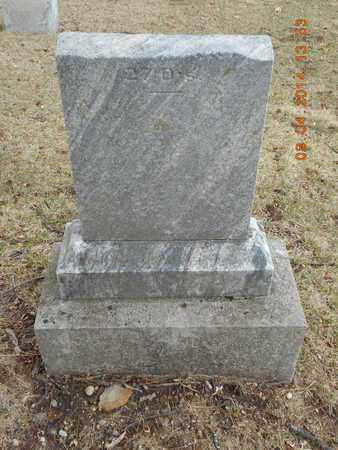 SMITH BUTTS, CHRISCILDA - Branch County, Michigan | CHRISCILDA SMITH BUTTS - Michigan Gravestone Photos