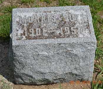 BUYS, MORRIS - Branch County, Michigan | MORRIS BUYS - Michigan Gravestone Photos