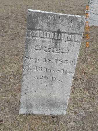 CALHOON, CHARLES - Branch County, Michigan | CHARLES CALHOON - Michigan Gravestone Photos