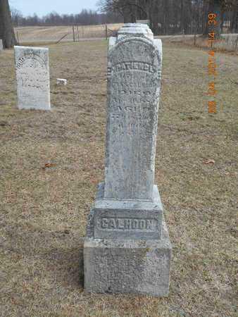 CALHOON, PATIENCE - Branch County, Michigan   PATIENCE CALHOON - Michigan Gravestone Photos