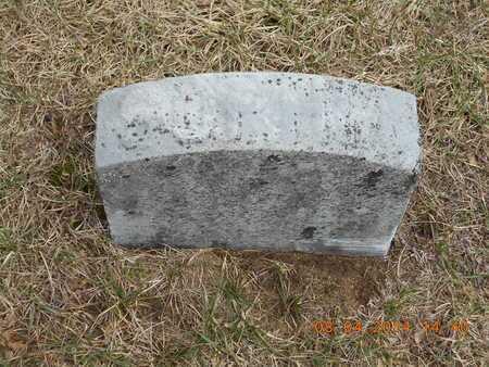 CALHOON, SOPHIA - Branch County, Michigan | SOPHIA CALHOON - Michigan Gravestone Photos