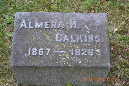 CALKINS, ALMERA H. - Branch County, Michigan | ALMERA H. CALKINS - Michigan Gravestone Photos
