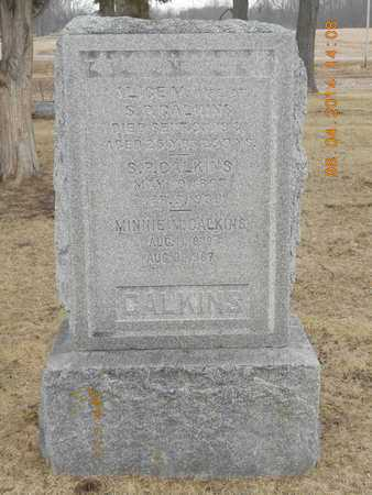 CALKINS, ALICE M. - Branch County, Michigan | ALICE M. CALKINS - Michigan Gravestone Photos