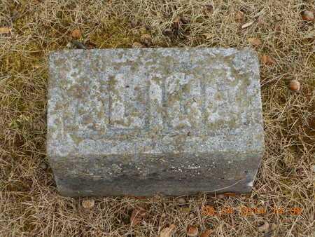 CALKINS, ALICE M. - Branch County, Michigan | ALICE M. CALKINS - Michigan Gravestone Photos