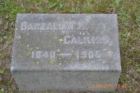 CALKINS, BARZALLAI H. - Branch County, Michigan | BARZALLAI H. CALKINS - Michigan Gravestone Photos