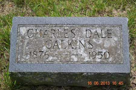 CALKINS, CHARLES DALE - Branch County, Michigan | CHARLES DALE CALKINS - Michigan Gravestone Photos