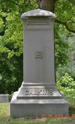 CALKINS, FAMILY - Branch County, Michigan | FAMILY CALKINS - Michigan Gravestone Photos