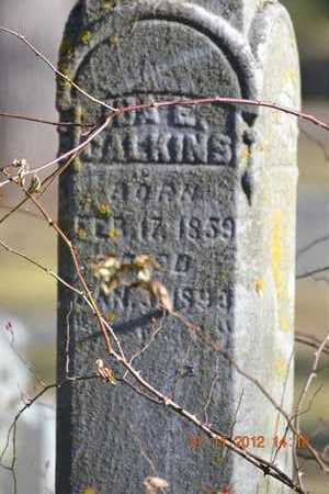 CALKINS, IDA E. - Branch County, Michigan | IDA E. CALKINS - Michigan Gravestone Photos