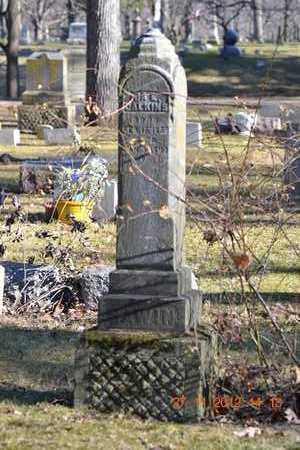 CALKINS, IDA E. - Branch County, Michigan   IDA E. CALKINS - Michigan Gravestone Photos
