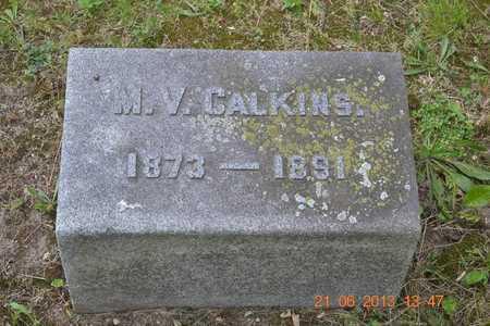 CALKINS, M.V. - Branch County, Michigan   M.V. CALKINS - Michigan Gravestone Photos