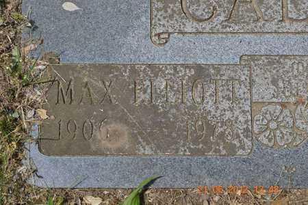 CALKINS, MAX ELLIOTT - Branch County, Michigan | MAX ELLIOTT CALKINS - Michigan Gravestone Photos
