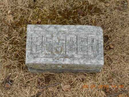 CALKINS, SAMUEL PEMBER - Branch County, Michigan | SAMUEL PEMBER CALKINS - Michigan Gravestone Photos