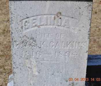 CALKINS, SELINDA - Branch County, Michigan | SELINDA CALKINS - Michigan Gravestone Photos