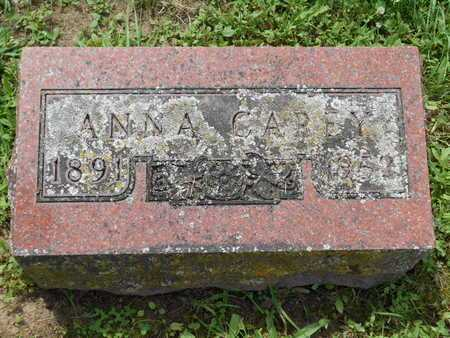 CAREY, ANNA - Branch County, Michigan | ANNA CAREY - Michigan Gravestone Photos