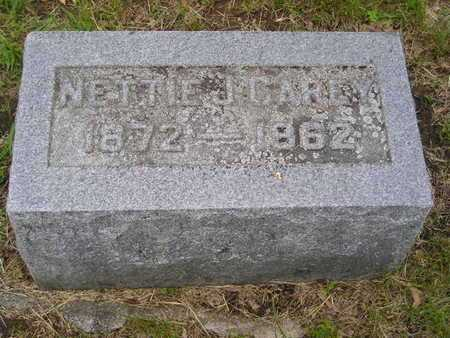 CAREY, NETTIE J. - Branch County, Michigan | NETTIE J. CAREY - Michigan Gravestone Photos
