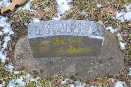 CARLS, MARIA E. - Branch County, Michigan   MARIA E. CARLS - Michigan Gravestone Photos