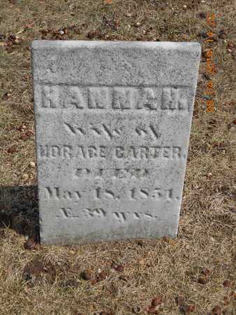 CARTER, HANNAH - Branch County, Michigan | HANNAH CARTER - Michigan Gravestone Photos