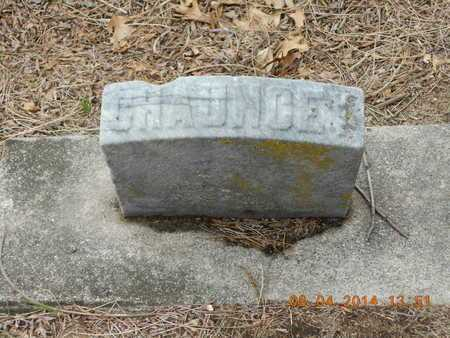 CHASE, CHAUNCEY - Branch County, Michigan | CHAUNCEY CHASE - Michigan Gravestone Photos