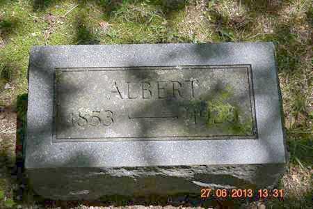 CHINNOCK, ALBERT - Branch County, Michigan   ALBERT CHINNOCK - Michigan Gravestone Photos