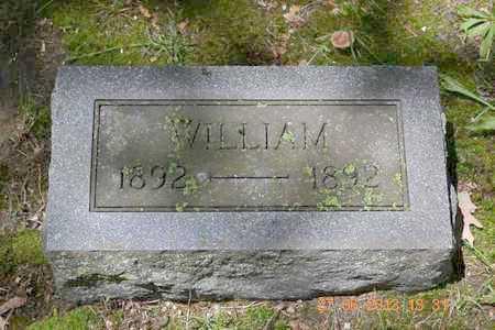CHINNOCK, WILLIAM - Branch County, Michigan   WILLIAM CHINNOCK - Michigan Gravestone Photos