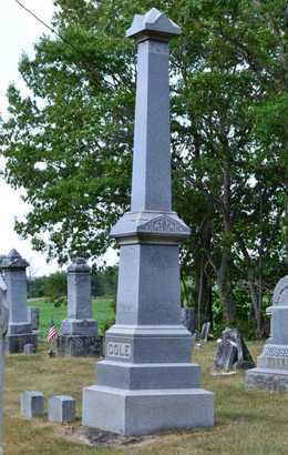 COLE, FAMILY MARKER - Branch County, Michigan | FAMILY MARKER COLE - Michigan Gravestone Photos