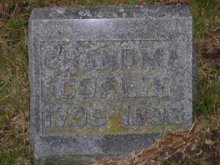 COPLIN, SALLY - Branch County, Michigan | SALLY COPLIN - Michigan Gravestone Photos