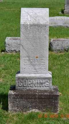 CORNING, DELVINA - Branch County, Michigan | DELVINA CORNING - Michigan Gravestone Photos