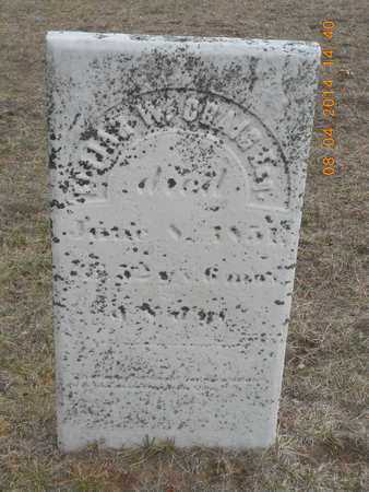 CRAIG, ESQ., ELIJAH W. - Branch County, Michigan | ELIJAH W. CRAIG, ESQ. - Michigan Gravestone Photos