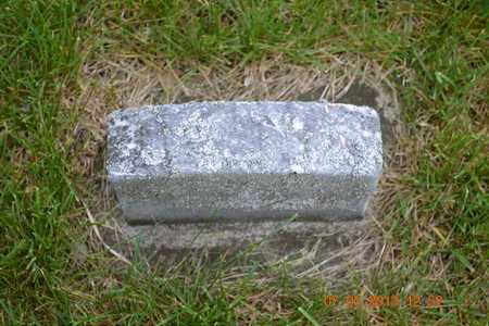 CRAIG, JENNIE - Branch County, Michigan | JENNIE CRAIG - Michigan Gravestone Photos