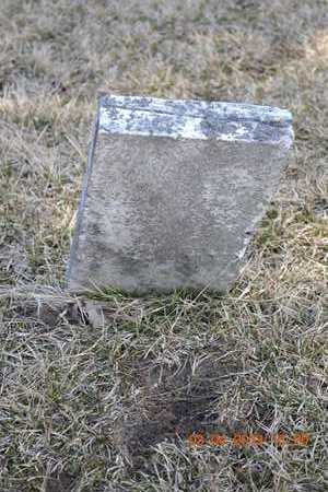 CRAIG, UNKNOWN - Branch County, Michigan | UNKNOWN CRAIG - Michigan Gravestone Photos