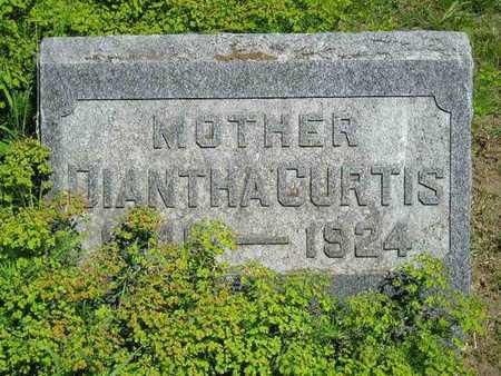 CURTIS, DIANTHA - Branch County, Michigan   DIANTHA CURTIS - Michigan Gravestone Photos