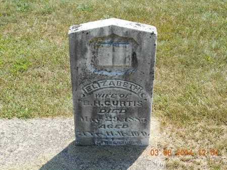 CURTIS, ELIZABETH - Branch County, Michigan | ELIZABETH CURTIS - Michigan Gravestone Photos