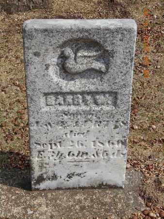 CURTIS, HARRY W. - Branch County, Michigan | HARRY W. CURTIS - Michigan Gravestone Photos