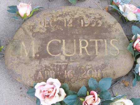 CURTIS, M. - Branch County, Michigan | M. CURTIS - Michigan Gravestone Photos