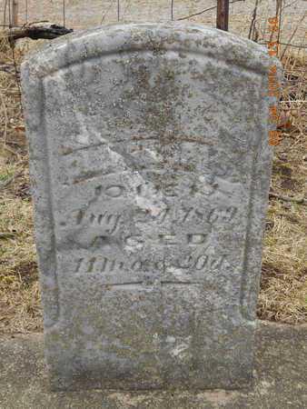 CURTIS, OLIVE - Branch County, Michigan   OLIVE CURTIS - Michigan Gravestone Photos