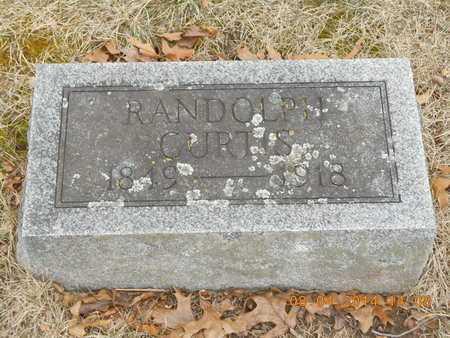 CURTIS, RANDOLPH - Branch County, Michigan | RANDOLPH CURTIS - Michigan Gravestone Photos