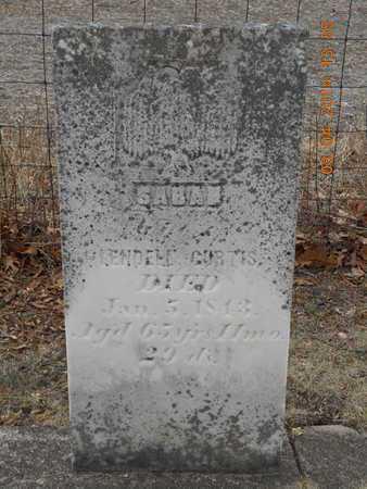 CURTIS, SARAH - Branch County, Michigan   SARAH CURTIS - Michigan Gravestone Photos