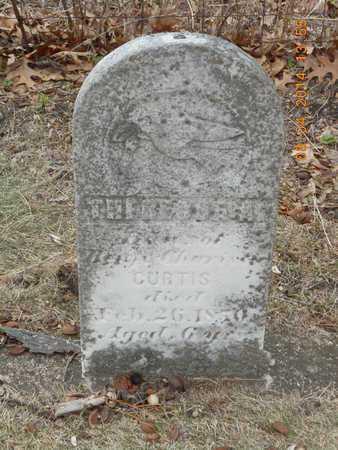CURTIS, THERESSA A. - Branch County, Michigan   THERESSA A. CURTIS - Michigan Gravestone Photos