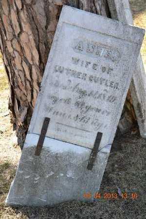 CUTLER, ANNA - Branch County, Michigan | ANNA CUTLER - Michigan Gravestone Photos