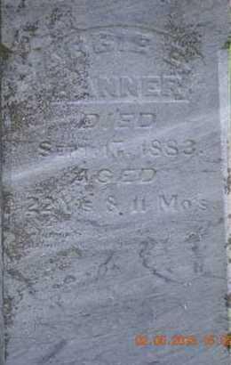 DANNER, ABBIE E. - Branch County, Michigan | ABBIE E. DANNER - Michigan Gravestone Photos