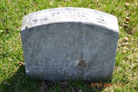 DAVIS, HATTIE B. - Branch County, Michigan | HATTIE B. DAVIS - Michigan Gravestone Photos