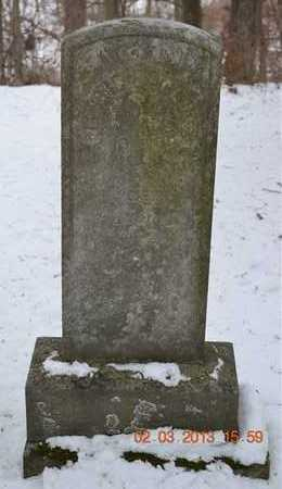 DECLUTE, JENNIE - Branch County, Michigan   JENNIE DECLUTE - Michigan Gravestone Photos