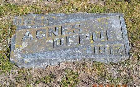 DEPUE, AGNES - Branch County, Michigan | AGNES DEPUE - Michigan Gravestone Photos