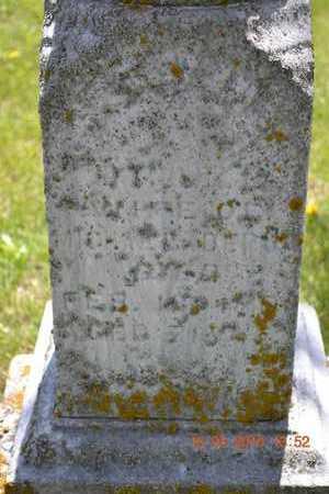 DEPUE, ANGELINE - Branch County, Michigan   ANGELINE DEPUE - Michigan Gravestone Photos