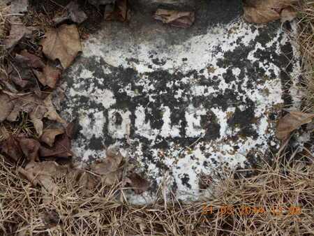 DEPUE, DOLLY - Branch County, Michigan | DOLLY DEPUE - Michigan Gravestone Photos